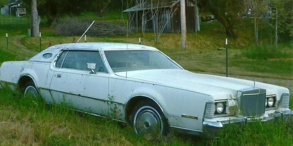 Defunct muscle car – Susan Leeper