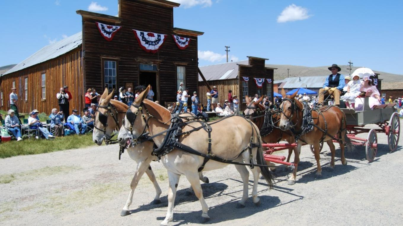 Friends of Bodie Day Parade, 1st Saturday in August – Sarah McCahill