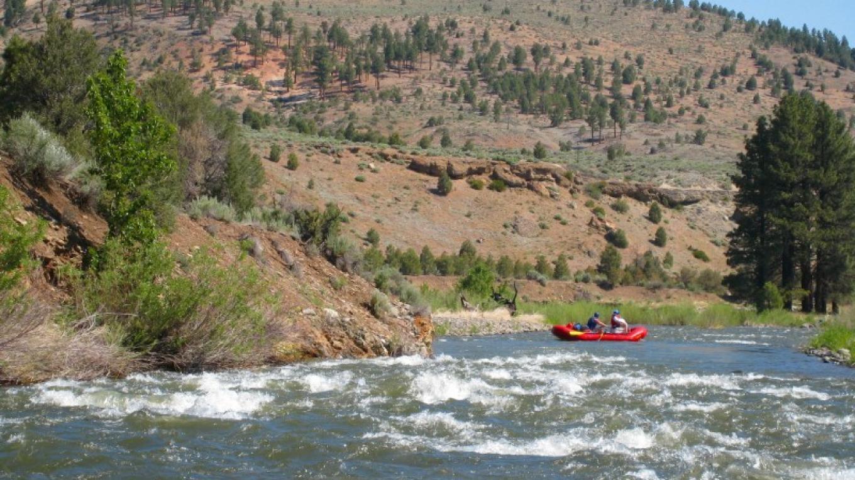 Carson River Kayaking
