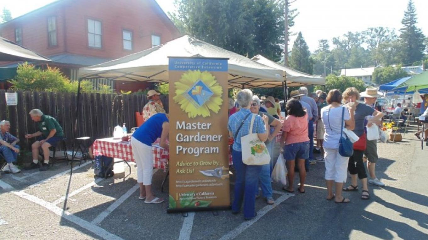 Amador County's Master Gardeners help the Jackson community to grow their own fresh food. – Amador County Farmers Market Association