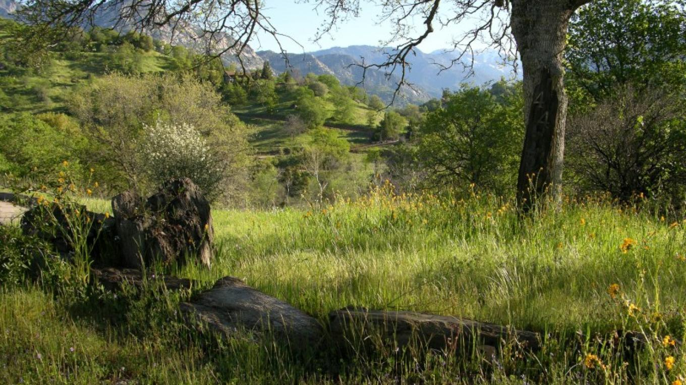 Springtime looking up from Three Rivers into Sequoia National Park – Tom Marshall
