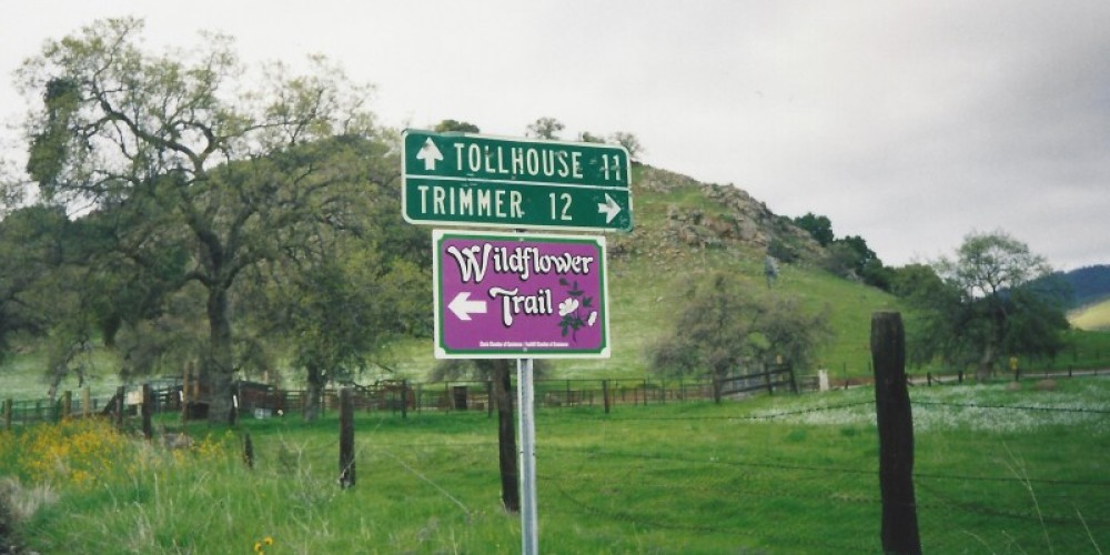 The Wildflower Signs start in Clovis and run through the foothills. – Judith Preuss
