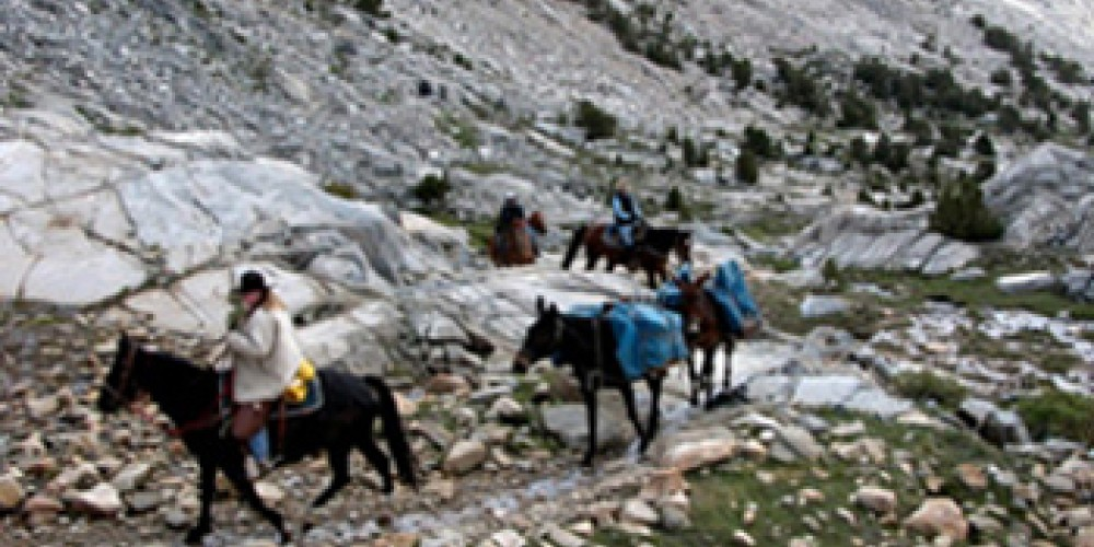 A pack string makes its way across the High Sierra. – Ken Babione