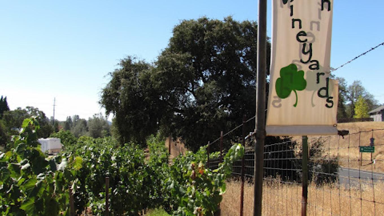 Irish Vineyards offers wine tasting daily – Erik Walt californiawinetastingadventures.net