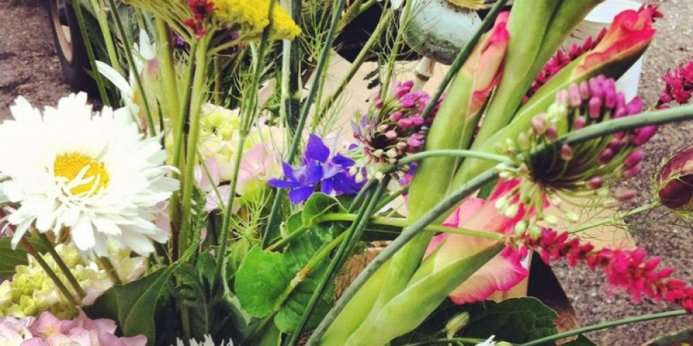 Flower power at Plymouth Farmers Market. – Amador County Farmers Market Association
