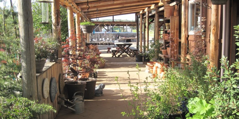 Patio area – Bonnie Bladen