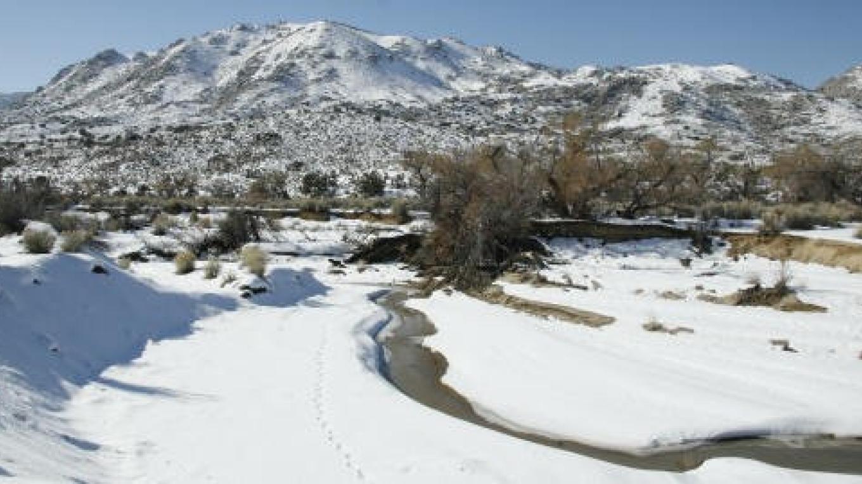 A winter scene at Audubon's Kelso Creek Sanctuary. – Alison Sheehey