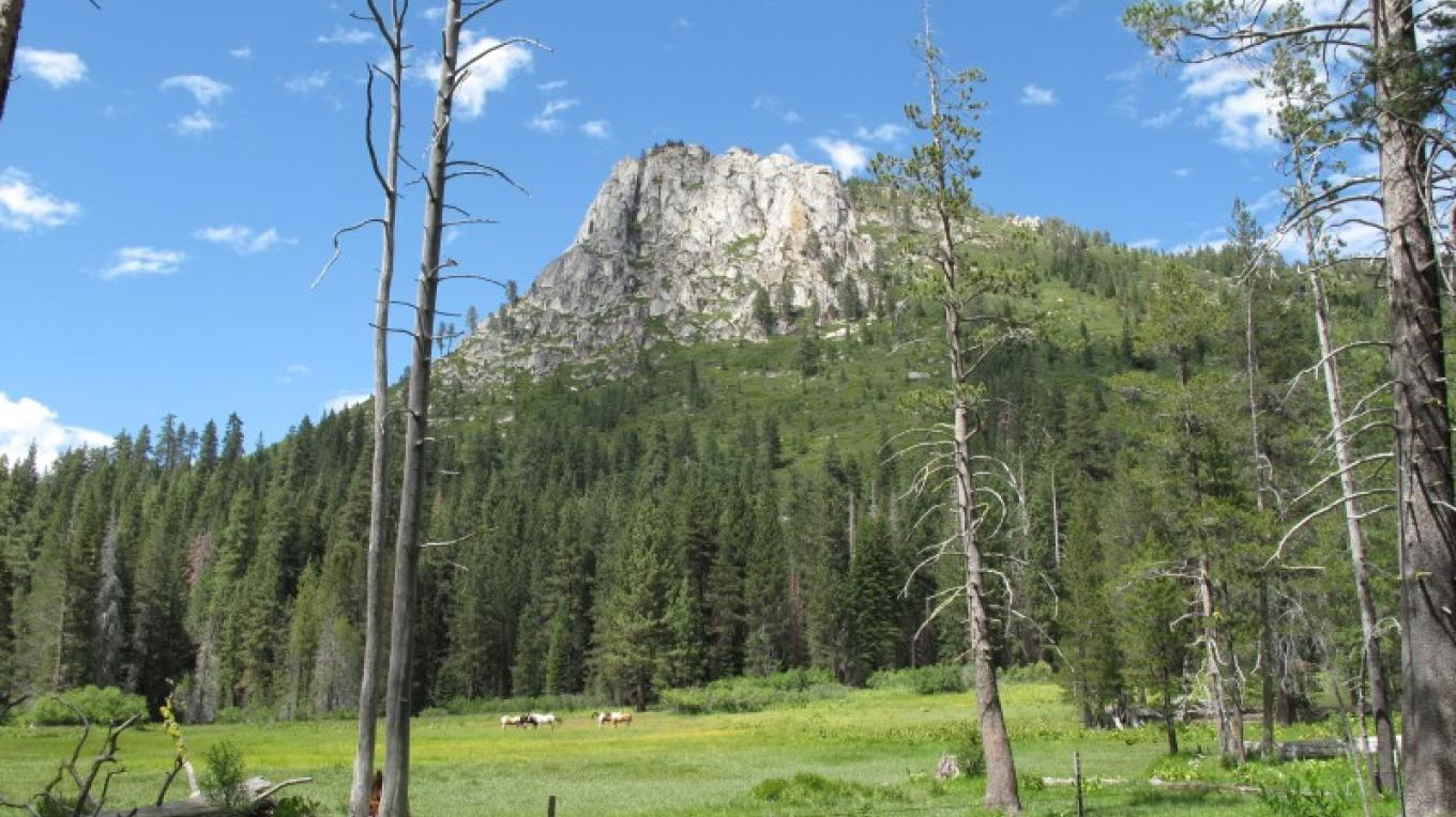 Stanislaus Forrest, Iceberg Meadow – Norm Nelson