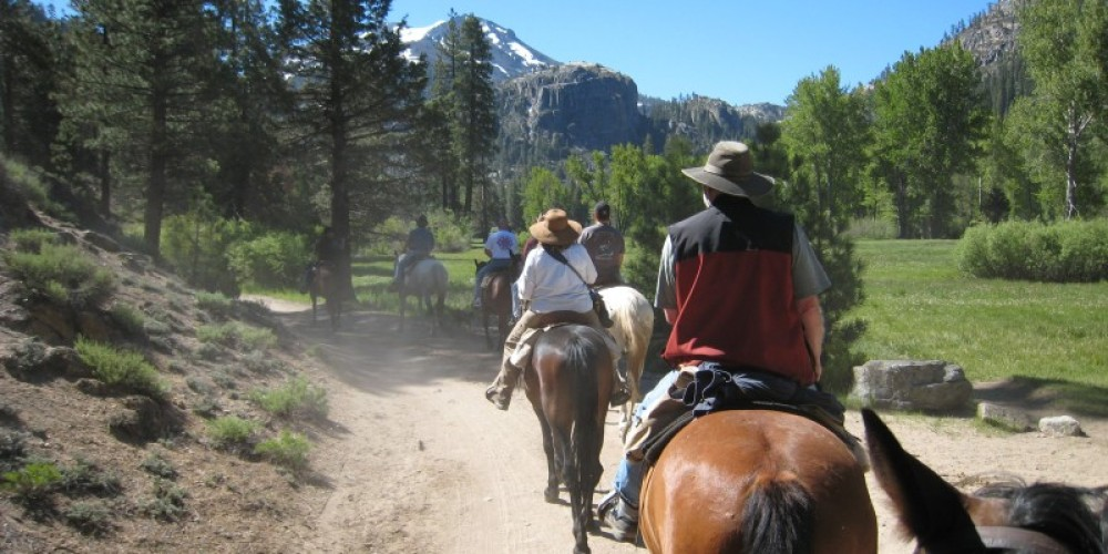 Horseback Riding througth the Upper Meadow. – Jane Belcher