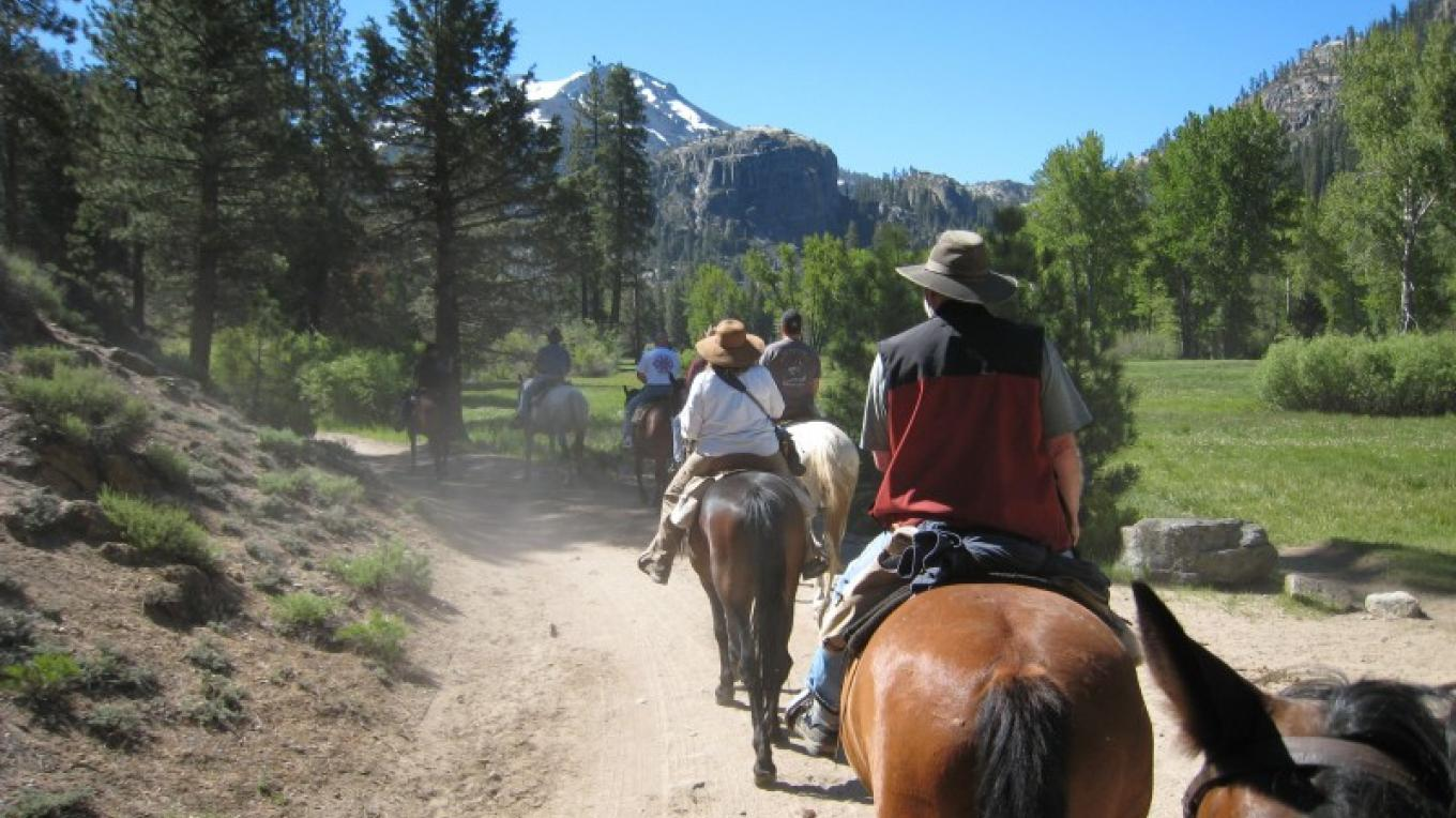Horseback Riding througth the Upper Meadow. – Jane Belcher