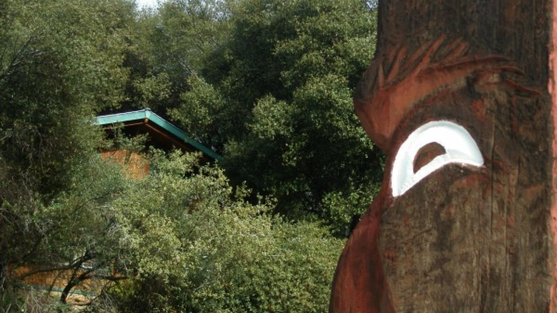 Indian Face Carved Totem Pole