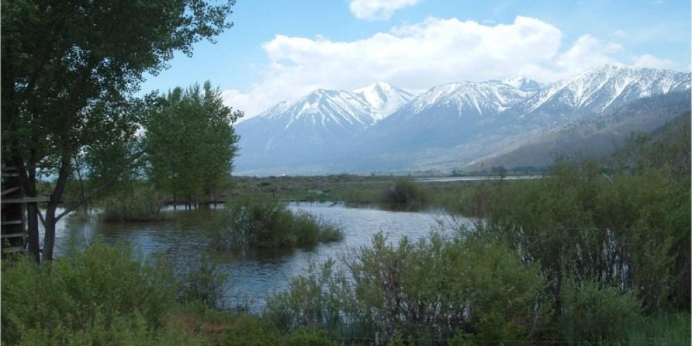 River Fork Ranch - pond near trailhead – Laura Crane