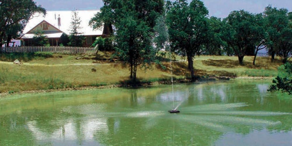 The Lyn-Mar Pond Guest Ranch home sits in a secluded area behind a beautiful pond.