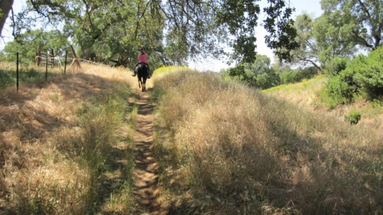 El Dorado Trail – www.eldoradotrail.com