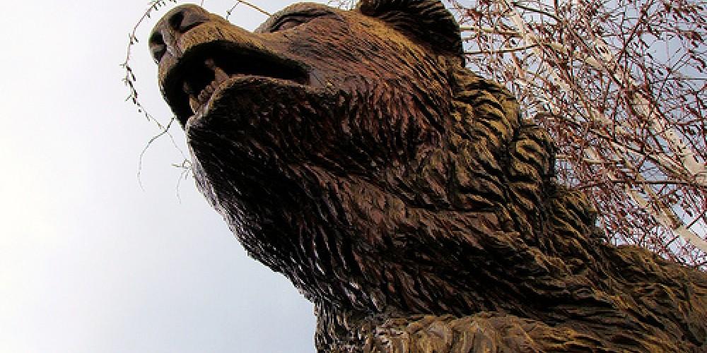Best Western Bear – Kathy McCorry