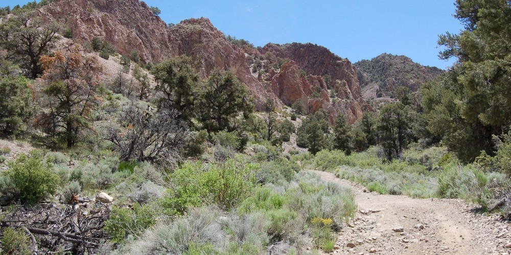 Majestic Red Canyons – NMCC