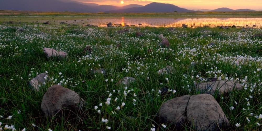 Sunrise on Table Mountain – David Hunter