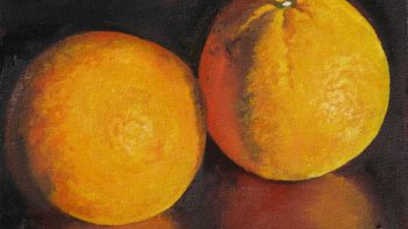 Oranges, oil painting