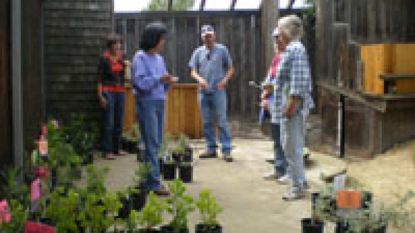 Members of the Alta Peak Chapter at the plant sale. – Elsah Cort