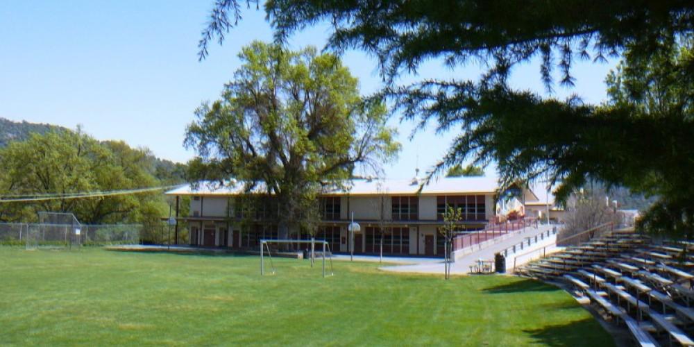 Beloved Sierra Elementary School and water oak – Susan Leeper