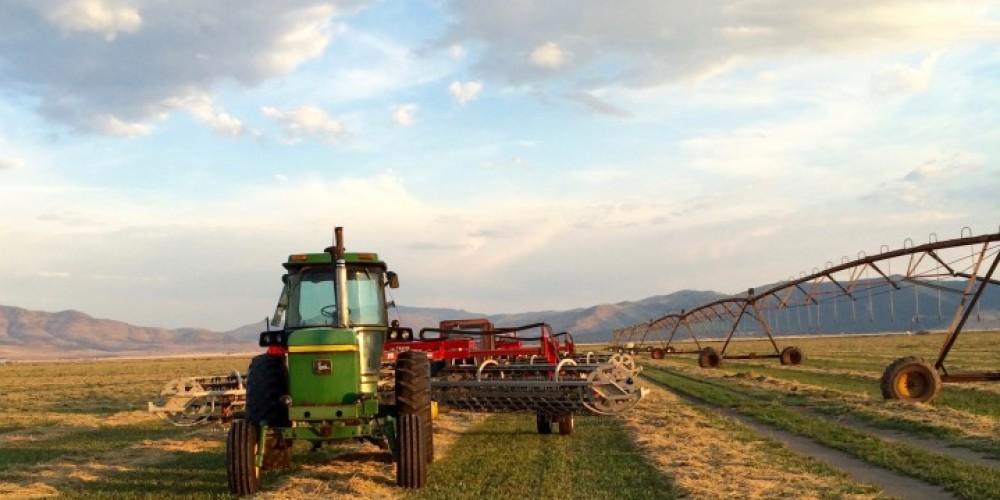 Roberti Ranch is a family-owned hay and cattle operation located in Sierra Valley. – - Roberti Ranch