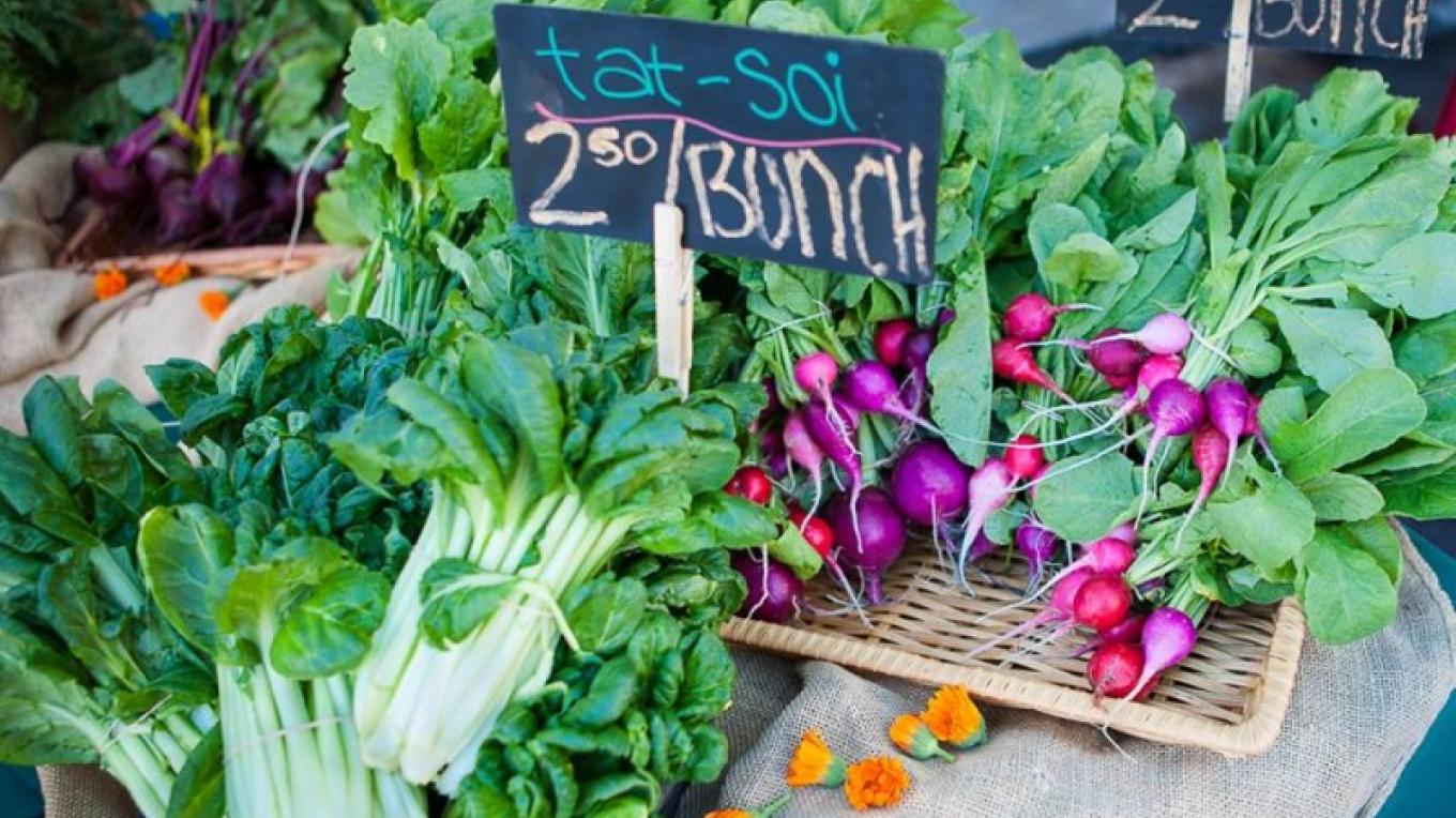 Nevada City Farmers Market Association