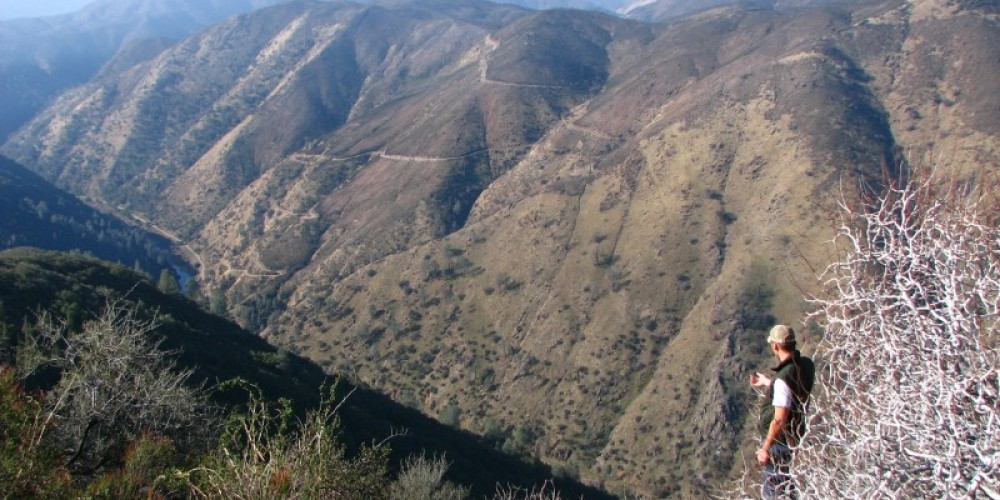 SFC\'s Limestone Salamander Preserve on Feliciana Mtn. in Mariposa County.  Looking down into the Merced River Canyon – Bridget Fithian