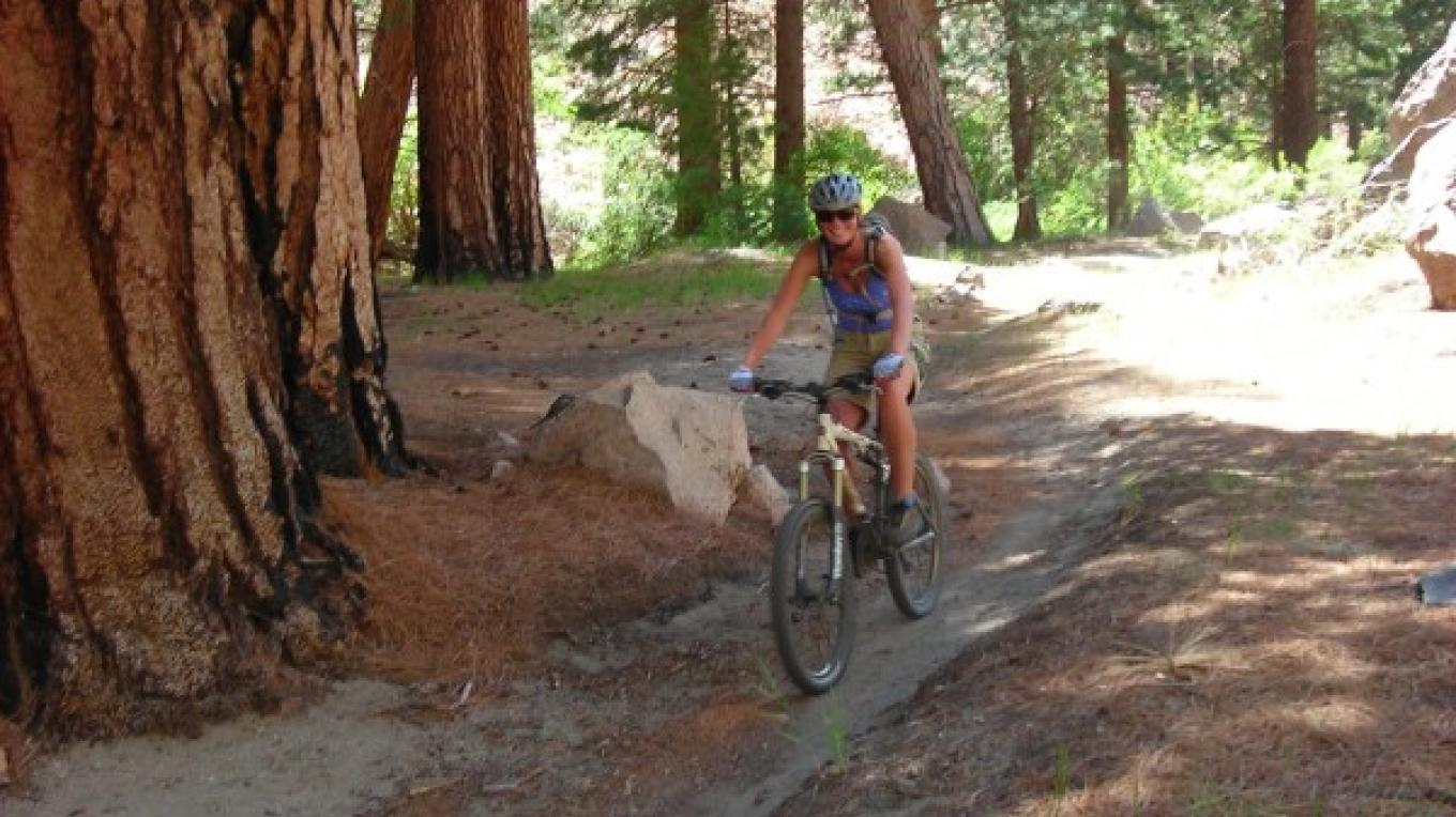 Shady Trees on Lower Rock Creek Mountain Bike Trail – Sarah McCahill