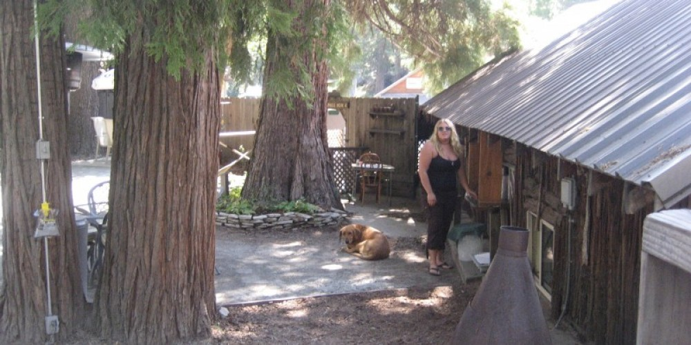 Outside in the patio dining area of The Trading Post where guests can dine among the Redwoods and sugarpines. – R.Sargentini