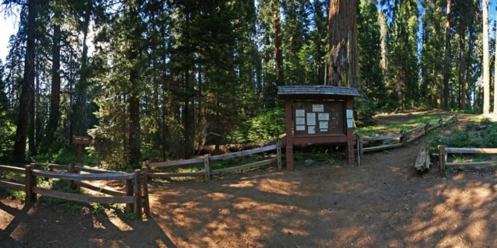 The trailhead at Redwood Saddle. – NPS/Rick Cain