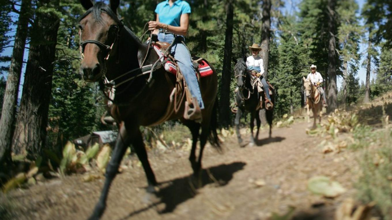 Horseback Riding at Northstar – Aaron Rosen