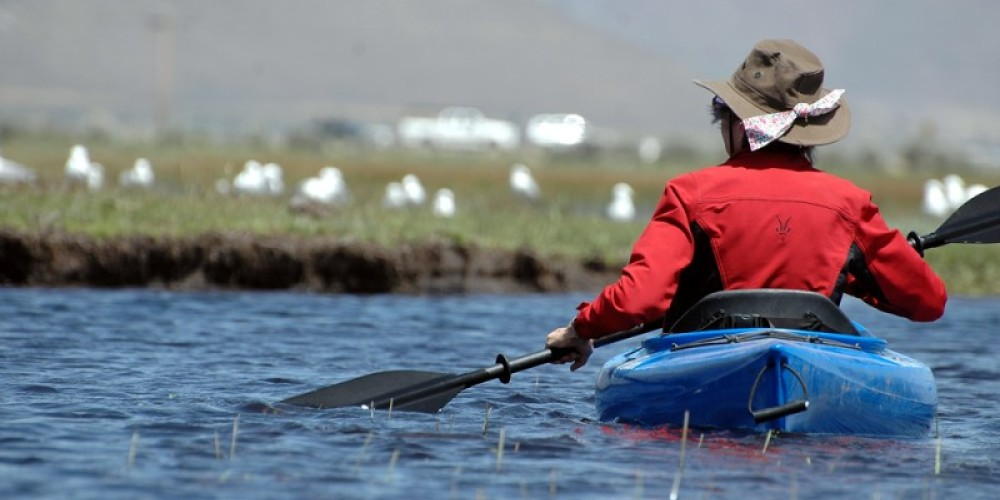 Kayaking near the Steel Bridge – Mary Davey