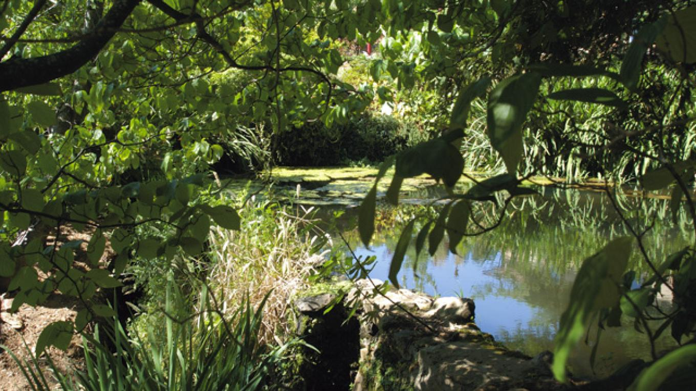 Pond at Boeger Winery