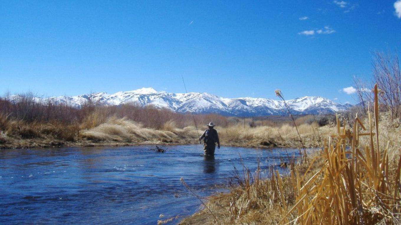 The Scenery of The East Walker, Rosaschi Ranch, NV March. – Don Weirauch