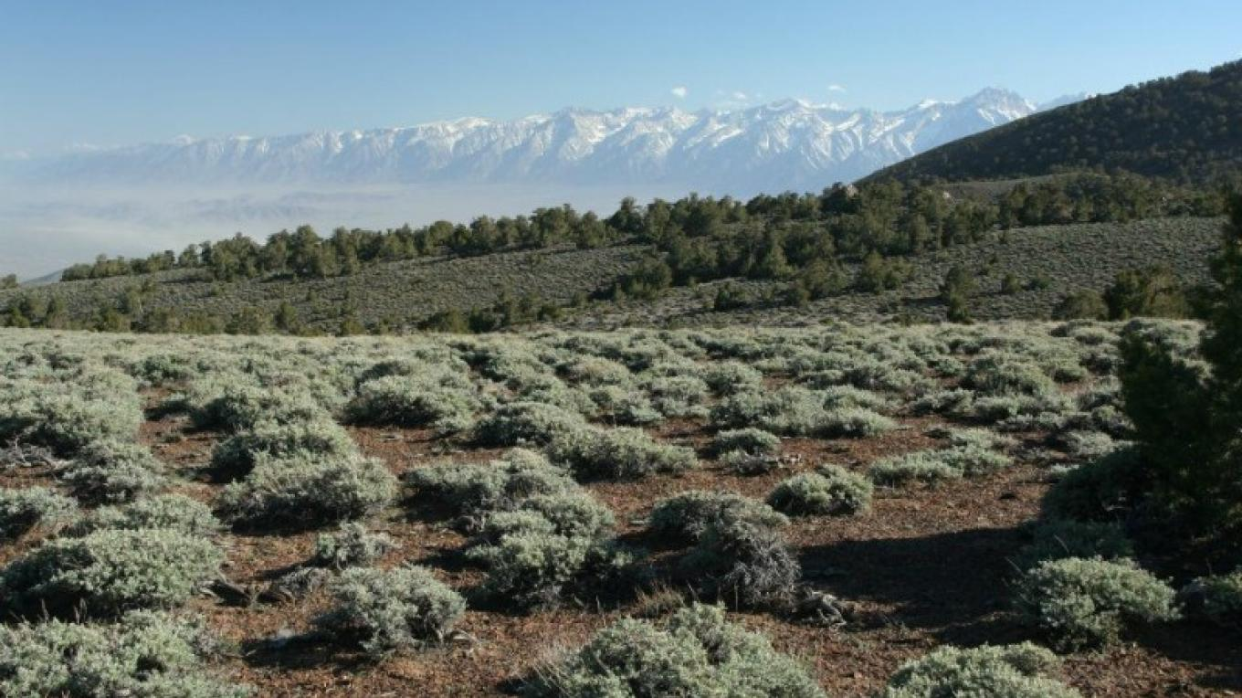 View of the Eastern Sierra and Owens Valley from the Inyo Mountains