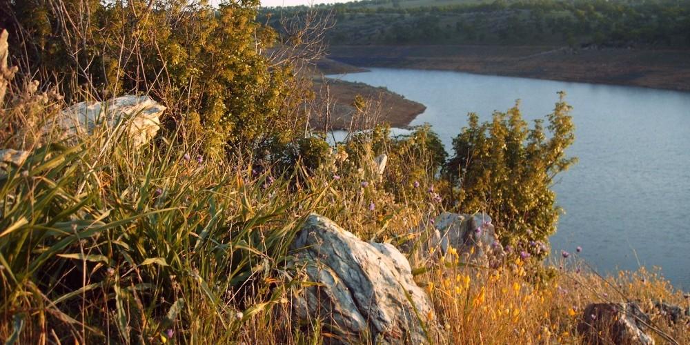 Shoreline trail 2 – Dave Jigour