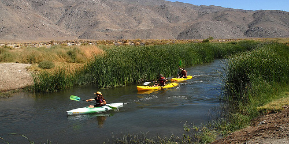 """Kayakers can now float sections of the Lower Owens River, thanks to the river restoration effort. Anglers and birdwatchers are also able to enjoy the \""""new\"""" waterway. – Los Angeles Department of Water"""