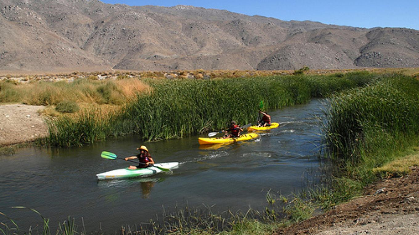 "Kayakers can now float sections of the Lower Owens River, thanks to the river restoration effort. Anglers and birdwatchers are also able to enjoy the ""new\"" waterway. – Los Angeles Department of Water"