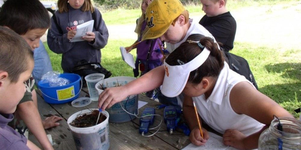 Future foresters of America! – Tracy Rowland