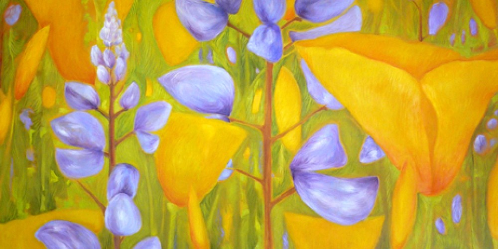 Poppies and Lupine. – Nadi Spencer