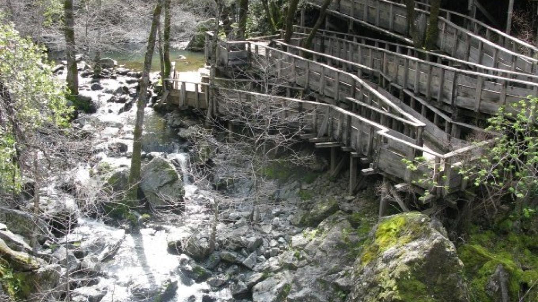 Rush Creek ramps – Linda Chaplin