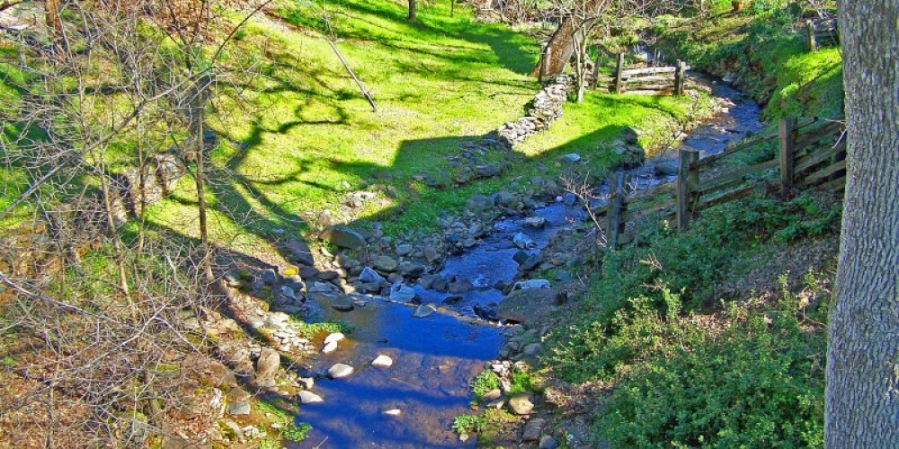 A view of the year-round creek next to the cottage. – John Mottoros