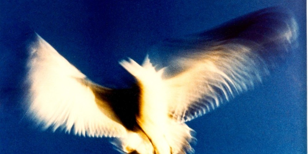 Holy Ghost – Paul Abram