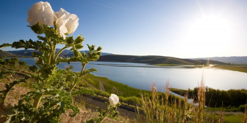 Topax Lake – Christian Pondella