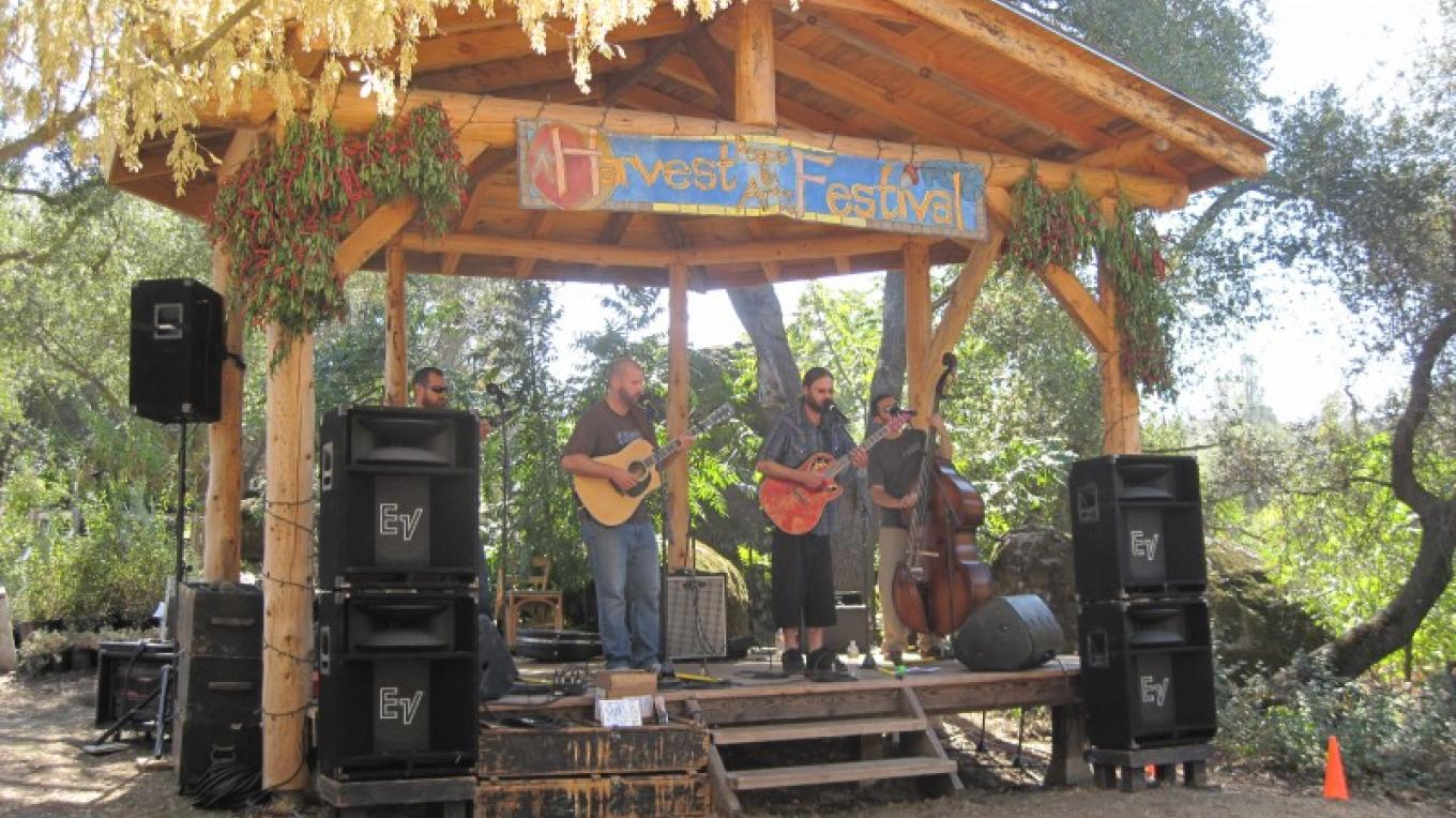 Poor Man's Poison on stage at Harvest Arts & Peace Festival – Bonnie Bladen