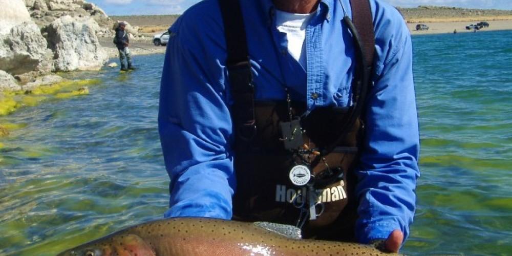 A Spring spawning Lahotan Cutthroat at Pyramid Lake. May – Liz Weirauch