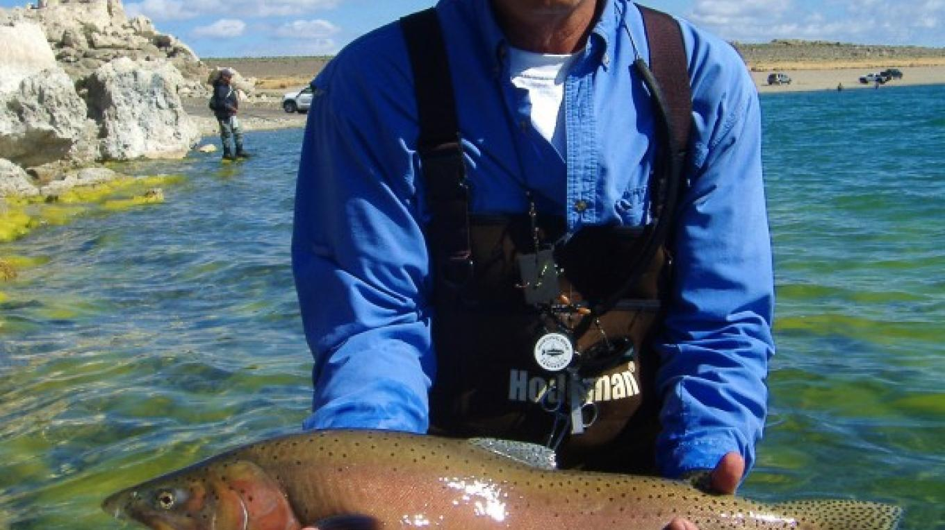 A Spring spawning Lahotan Cutthroat at Pyramid Lake. May – Liz Weirauch