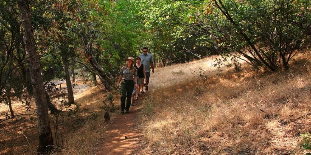 Paradise Creek Trail is well-shaded, making it a pleasant foothills hike even during the summer heat. – NPS/Rick Cain