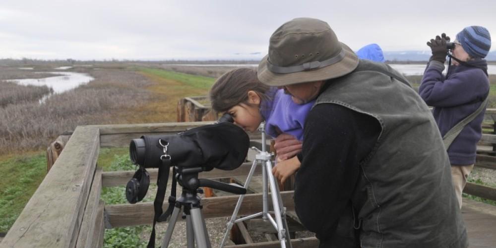 Junior Naturalist Activities
