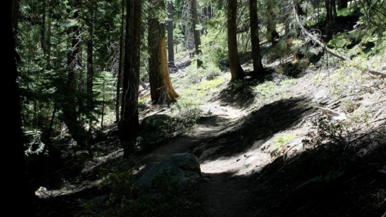 Tahoe Yosemite Trail – Jamie Cheshire